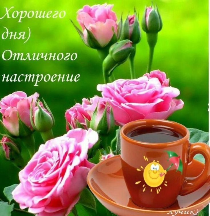 Рождение, флеш открытки доброго утра и хорошего дня
