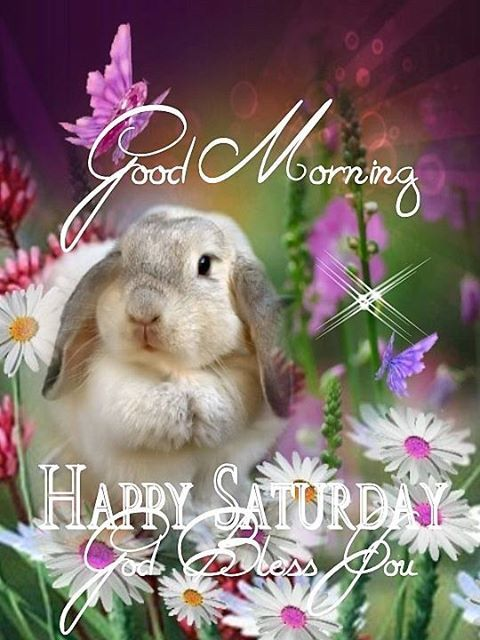 Good Morning, HAPPY SATURDAY. God Bless You.