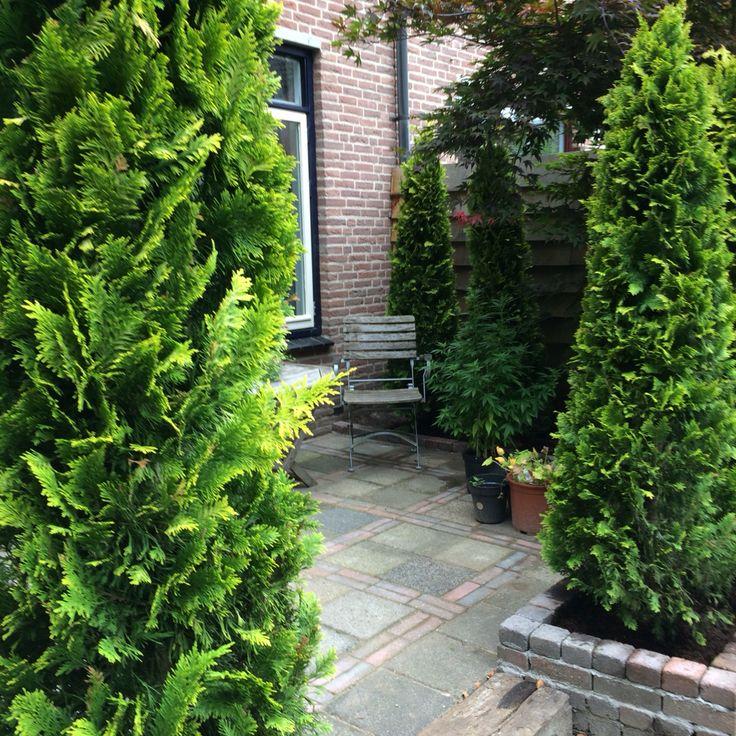 Eerste deel van onze tuin is klaar