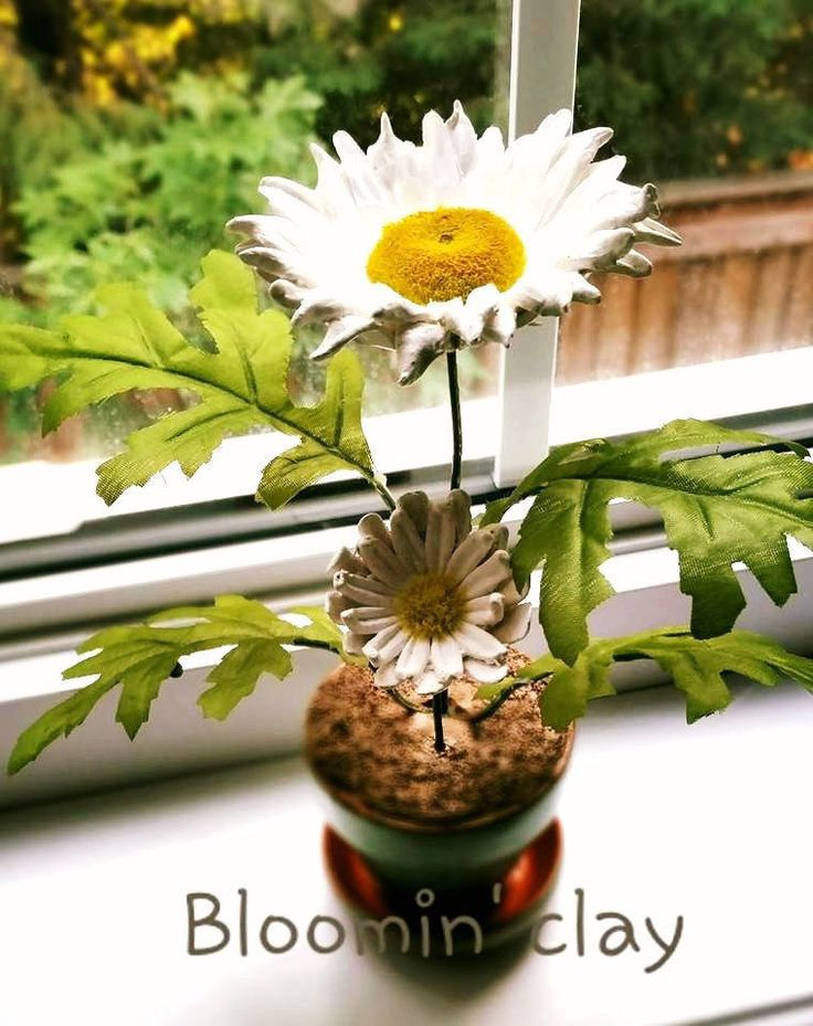 daisy flower arrangement, floral arrangement, daisy's in a pot, fake flowers, home and living, home decor, table decor handmade clay flowers by BloominClay on Etsy