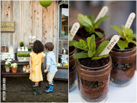 """Cute idea for """"potted plants"""" for a kids party! Chocolate with brownie crumbs!"""