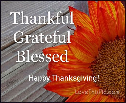 Thankful, grateful quotes quote happy thanks thanksgiving happy thanksgiving happy thanksgiving quotes quotes for thanksgiving thanksgiving quotes for facebook