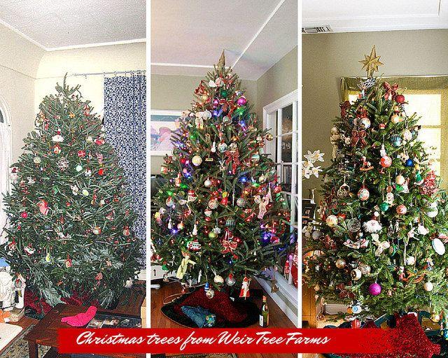 25+ melhores ideias de Christmas trees online no Pinterest