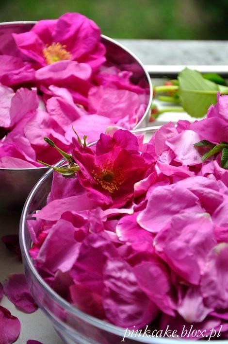 płatki róży karbowanej