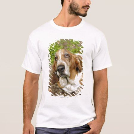 Basset Hound 2 T-Shirt - click/tap to personalize and buy