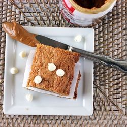White Chocolate Biscoff Blondies: Good enough to convert even a die ...