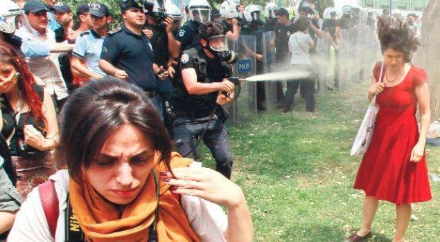 Taksim Gezi Parkı'nın Sembolü Oldu_resim