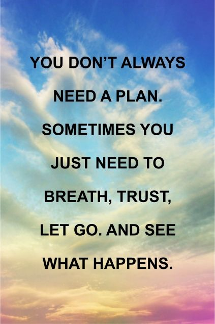 You don't always need a plan. Sometimes you just need to ...