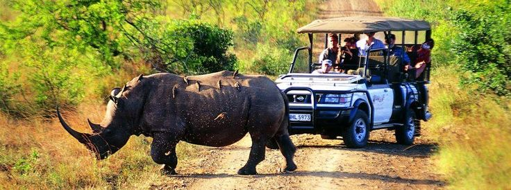 The Top 10 Tourist Attractions in South Africa.