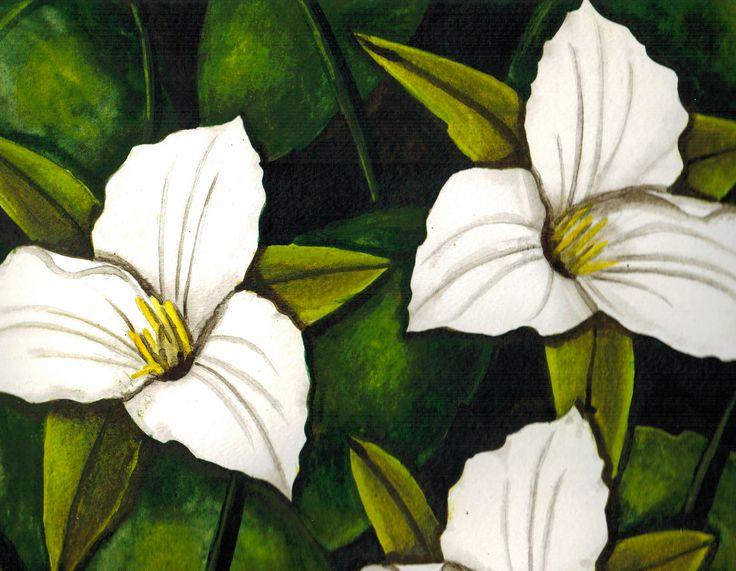 """""""Trilliums""""  Visit my Etsy shop: www.sweetpeafineart.etsy.com View my artist website: www.sweetpeafineart.com"""