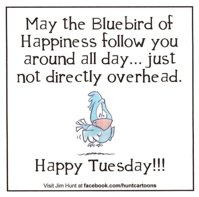 tuesday pictures | Spreading the Humor
