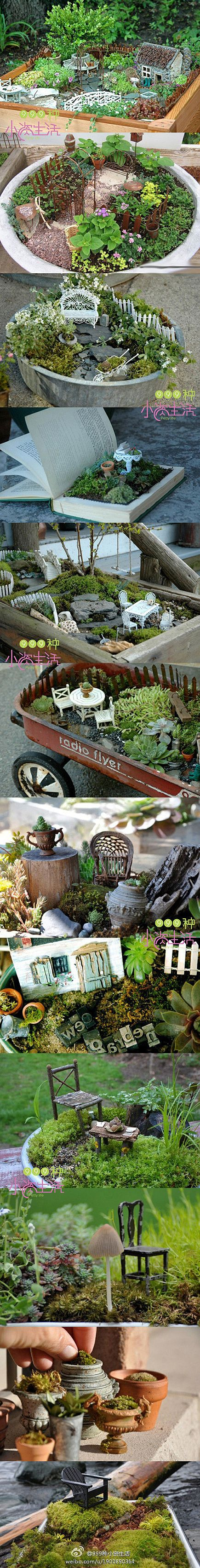 .Fairy Gardens