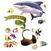 Cutout Props Marine Life Pkt16 $20.95 BE52074