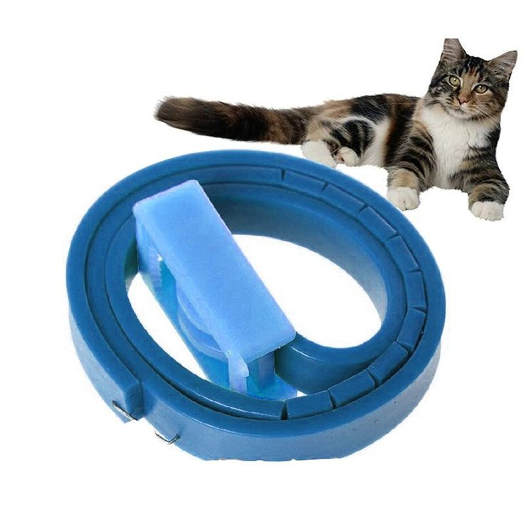 Cat Flea Collar -- Water Resistant -- Safety Release Mechanism (Pack of 8) ** For more information, visit image link. #CatCollarsHarnessesandLeads