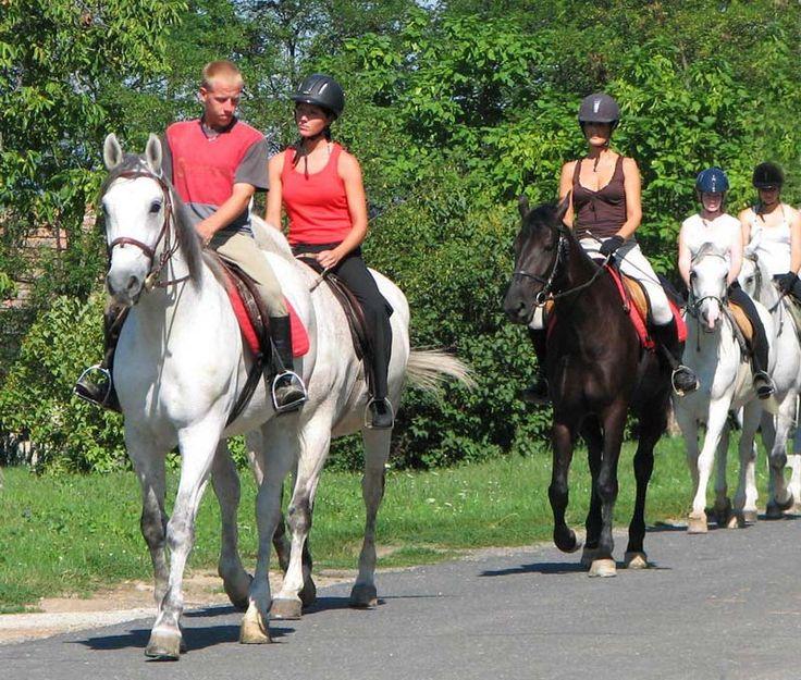 """Lovaglás a Balatonföldvári Turisztikai Régióban _____________________________ """"Régiónk a lovasok paradicsoma. Itt található az ország legnagyobb arab lótenyészete, a Pelsonius ménes, a híres Gidrán ménes Marócpusztán. Szántódpuszta és Rádpuszta is a lovak szerelmeseinek kedvében jár."""""""