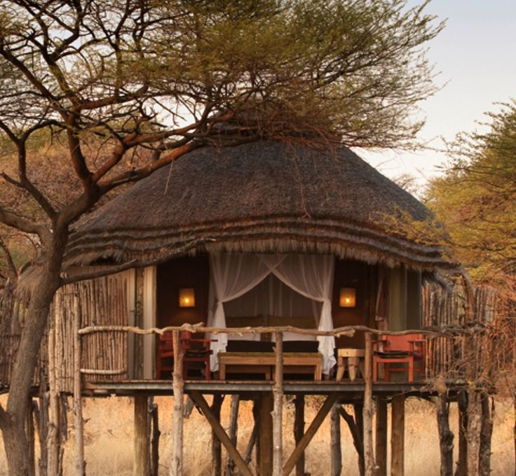 Your bedroom is really set in the bush, high on stilts.  Beautiful.