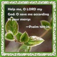 Psalm  109:26    Help me, O Lord my God: O save me according to thy mercy:   KJV
