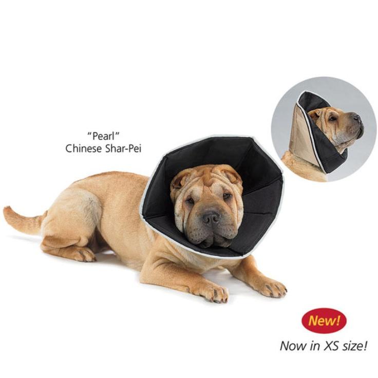Comfy cone diy dog stuff dog cone diy dog collar