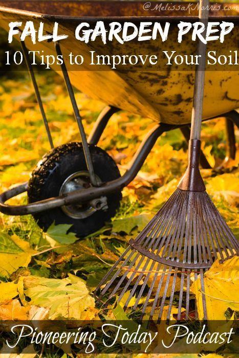Podcast #38 Fall Gardening Prep 10 Tips to Improve Your Soil | Melissa K. Norris