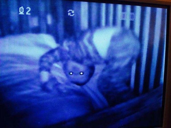 11 Gambar Bayi Dirakam Menerusi TV Pemantau Bayi ini Pasti Membuatkan Ibu Bapa Tidak Lena Tidur