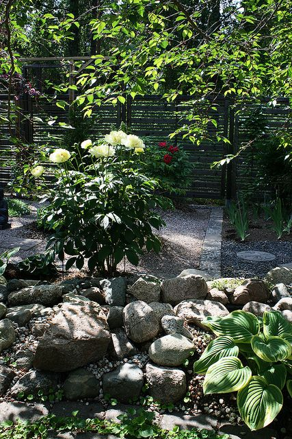 Garden View   Flickr - Photo Sharing!