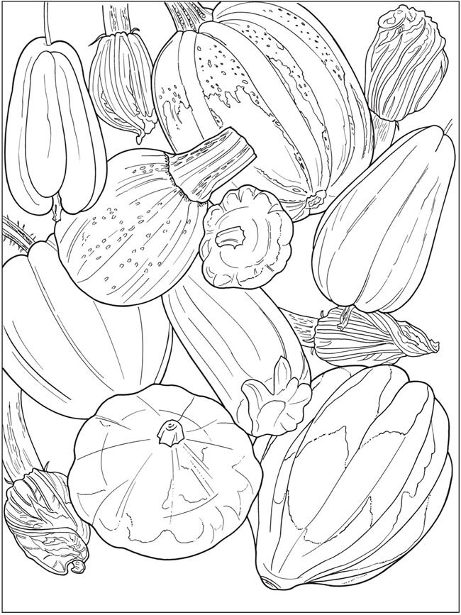Creative Haven Beautiful Nature Designs Coloring Book Art By Ruth Soffer Via Dover Publications Coloring Book Art Coloring Books Designs Coloring Books