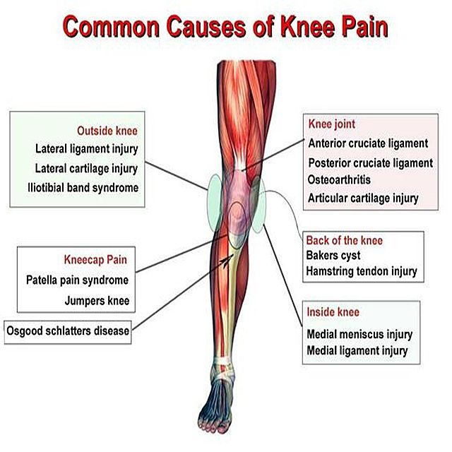 Back Disorders and Knee Pain - verywellhealth.com