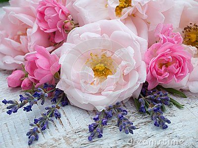 Large pale pink and small bright pink roses and lavender bouquet on white painted background