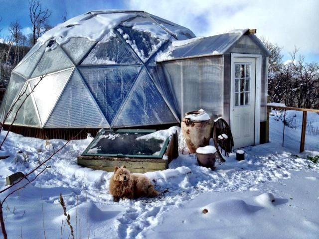 26' Growing Geodesic Dome Greenhouse ...The best greenhouse plans out there!!! CHECK 'EM OUT! My dream is to have this as a year round greenhouse!!!
