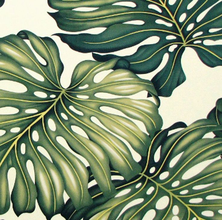 Monstera Upholstery Fabric, Furniture Fabric Hawaii, Curtains Tapestry  Fabric, Cushion Covers, Cotton Twill By The Yard