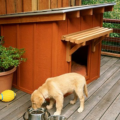 Free plans: Build a stylish dog house  ...  This stylish ranch-style dog house is made from three sheets of plywood and is big enough for a large dog. Redwood lattice battens and a shed roof create the rustic ranch-house look.    A little arbor of 2-by-2s above the door adds interest and provides shade, and a removable asphalt-shingle roof makes cleaning inside easy.