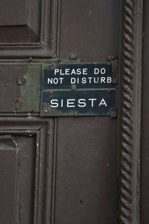 haha need this sign, definetely! even if the weather is not sooooo hot in Germany:-) do not disturb sign, outside, words, funny