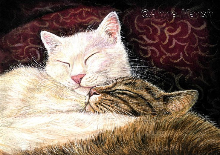 White tabby cat closeness of you limited edition print painting anne marsh art