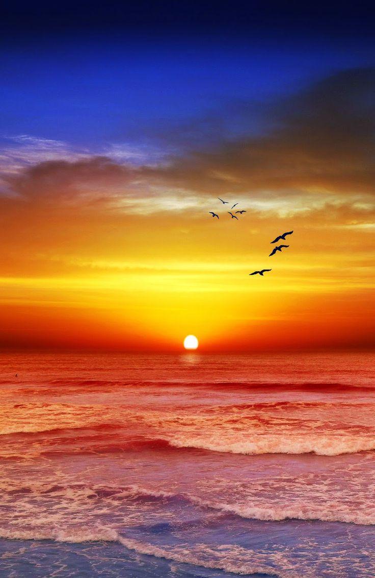 beach sunset tumblr free desktop