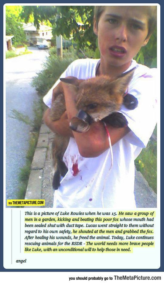 GOOD GUY LUKE!!! The Child Who Saved A Fox