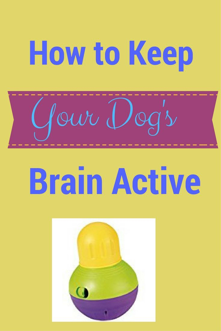how to keep brain healthy and active