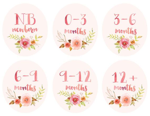 Baby Girl Infant Clothing Printable Tags Labels by thepapersociety