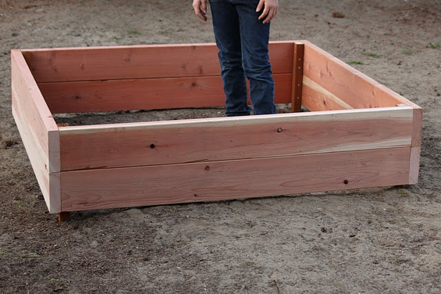 how-to build a raised garden box