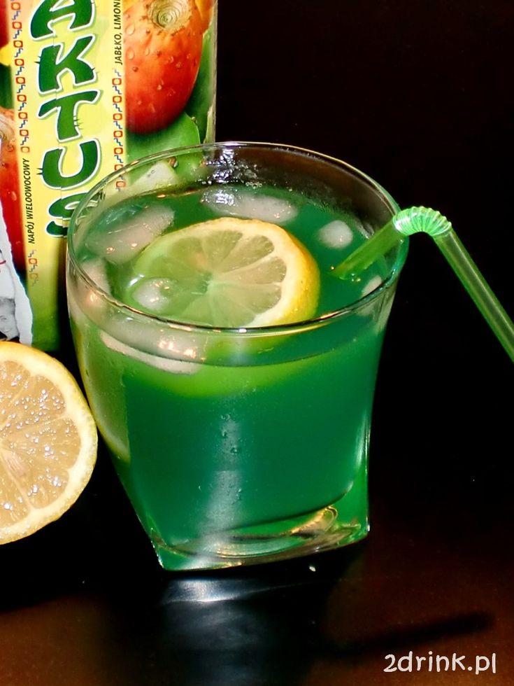 Sok z kaktusa, szczególnie jak jest zmrożony, świetnie nadaje się do drinków właściwie z każdym alkoholem. Ostatnio mieszałam go z wódką, a dziś sok kaktusowy z ginem.