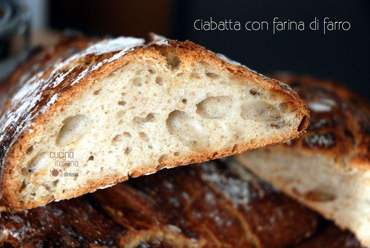 Ciabatta di farro e farina integrale, ricetta con pasta madre per un pane dalla crosta croccante e dalla mollica soffice e alveolata.