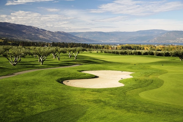 You may also enjoy the Golf courses in Kelowna. Visit The Harvest Golf Club at 2725 KLO RD, Kelowna, British Columbia V1W 4S1, Canada