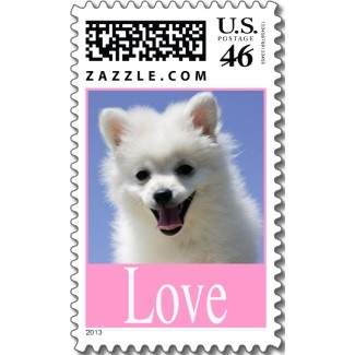 Cute American Eskimo Puppy Love Postage Stamps.   http://www.zazzle.com/love_white_american_eskimo_puppy_dog_postage_stamp-172912745897222971?gl=merrybrides=238669615131463341