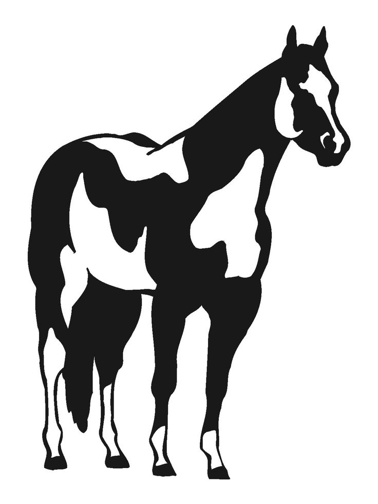 Horse decal-Horse wall decal-Horse sticker-Paint horse decal-Paint horse sticker-20 X 28 inches