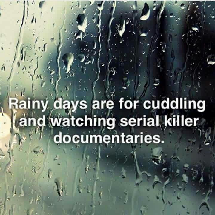 Funny Quotes About Rainy Days: 535 Best Funny Images On Pinterest