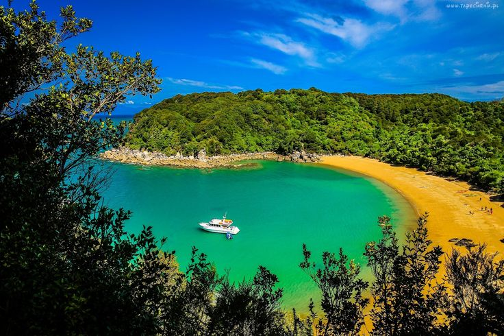 Abel Tasman National Park, Nowa Zelandia, Morze, Wybrzeże, Plaża