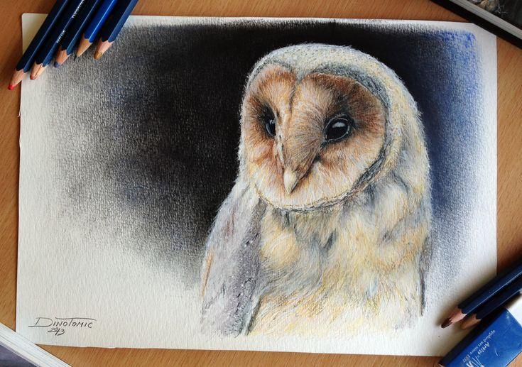Owl Color Pencil Drawing by AtomiccircuS.deviantart.com on @deviantART