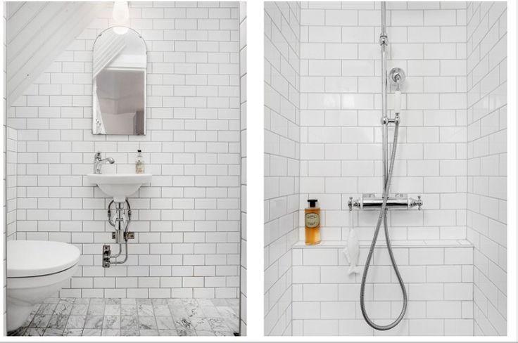 Liten toa och dusch.