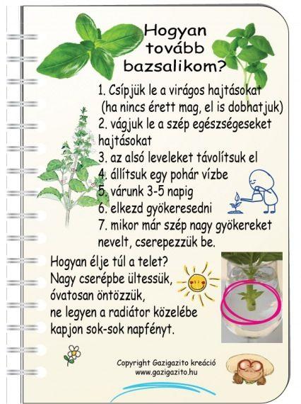 INFOGRAFIKÁK - gazigazito.hu