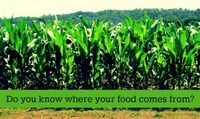 Canadian Better Living Shares the Secrets of Where Food Comes From #WhereFoodComesFrom