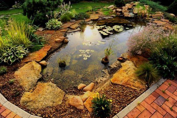 15 Small Backyard Pond Ideas Water Garden Advice Small Backyard Ponds Ponds Backyard Pond Landscaping